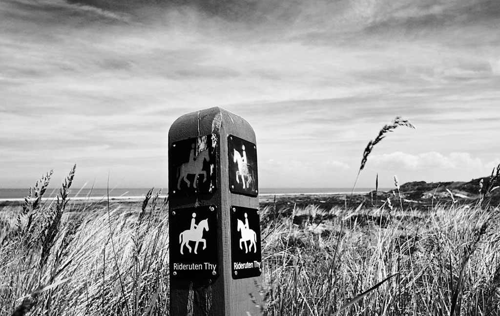 Signposts for horses are needed on trails too