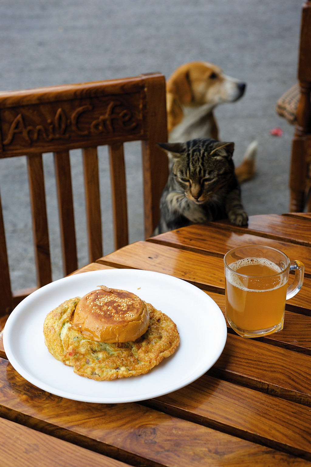 A cat admires the bun omelette at Anil's Cafe