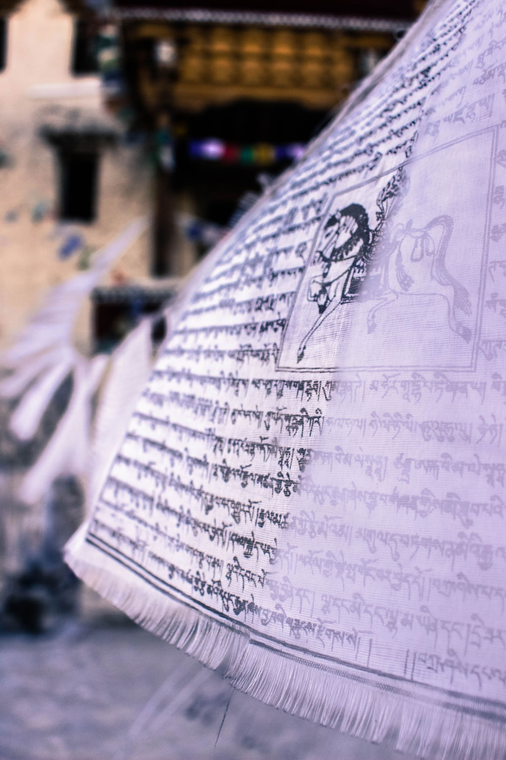 Sacred scriptures written on cloth hung outside the Shey Monastery